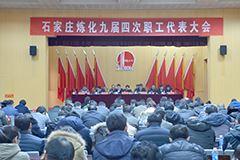 石家庄炼化分公司九届四次职工代表大会隆重召开
